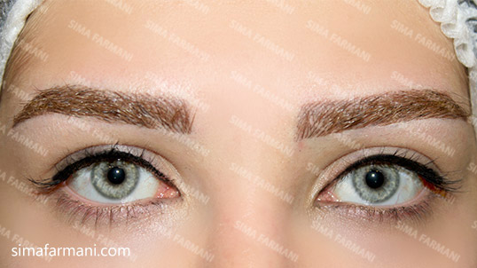 micropigmentation_eyelin_after2